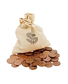 Lincoln Penny Bankers Bag Beginner Coin Set