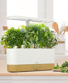 by AeroGarden Harvest Slim White with Wood Base and Gourmet Herbs Seed Pod Kit, Created for Macy's