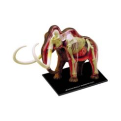 4D Master 4D Vision Wooly Mammoth Anatomy Model