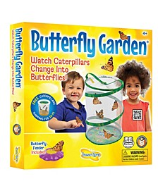 STEM Educational Butterfly Life Cycle Growing Kit