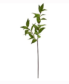 34in. Laurel Leaf Artificial Spray Set of 6