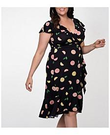Womens Plus Size Ciara Cinch Dress