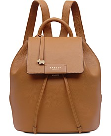 Ada Street Flapover Backpack