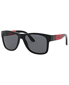 Polarized Sunglasses, PH4162 54