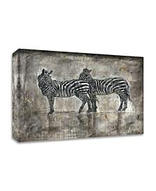 Zebras by Marta Wiley Print on Canvas