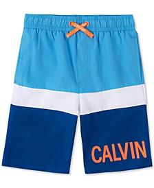 Big Boys Colorblocked Logo Swim Trunks