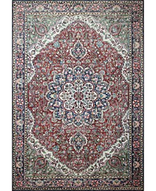 """Effects I166 3'9"""" x 5'6"""" Area Rug"""