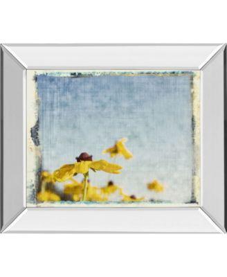 Blackeyed Susan's I by Meghan Mc Sweeney Mirror Framed Print Wall Art, 22