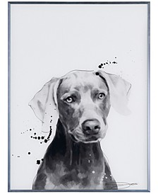 """Weimaraner Pet Paintings on Reverse Printed Glass Encased with a Gunmetal Anodized Frame Wall Art, 24"""" x 18"""" x 1"""""""