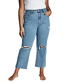 Curve Straight Stretch High Rise Jeans