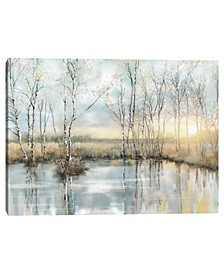 Calm Reflections by Studio Arts Canvas Art Print