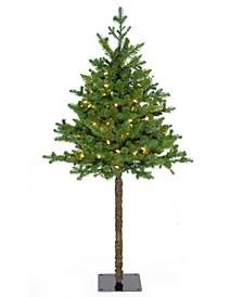 4' Prelit Balsam Christmas Tree with 100 LED Lights
