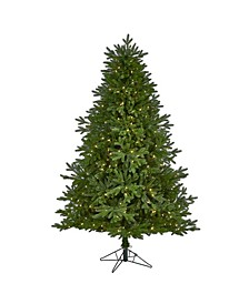 Nova Scotia Fir Real Touch Artificial Christmas Tree with 400 Multifunction Warm LED Lights with Instant Connect Technology and 973 Bendable Branches
