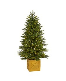 Manchester Fir Artificial Christmas Tree in Decorative Planter with 250 Clear Warm Multifunction LED Lights and 366 Bendable Branches