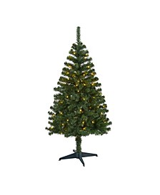 Northern Tip Pine Artificial Christmas Tree with 100 Clear LED Lights