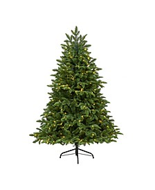 Wyoming Fir Artificial Christmas Tree with 250 Clear LED Lights and 630 Bendable Branches