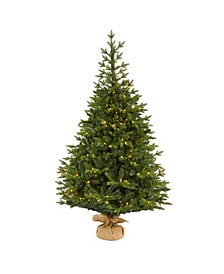 "Fraser Fir ""Natural Look"" Artificial Christmas Tree with 300 Clear LED Lights, A Burlap Base and 2113 Bendable Branches"