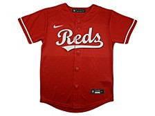 Youth Cincinnati Reds Official Blank Jersey