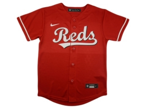 Nike Youth Cincinnati Reds Official Blank Jersey