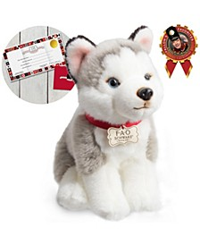 Toy Plush Puppy Floppy Husky 10inch