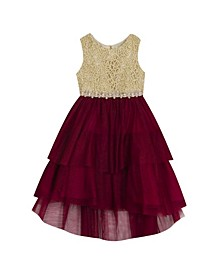 Little Girl Embroidered Dress With Tiered Skirt
