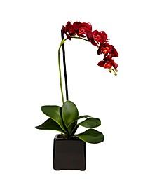 Orchid Artificial Arrangement in Black Planter