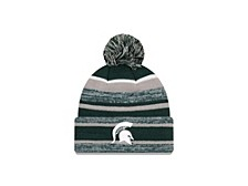 Michigan Wolverines Striped Marled Knit Hat