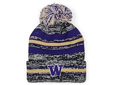 Washington Huskies Titanium Knit Hat