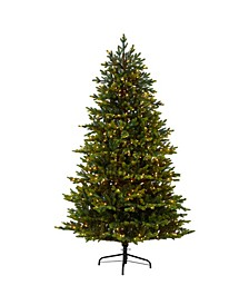 North Carolina Fir Artificial Christmas Tree with 550 Clear Lights and 3703 Bendable Branches