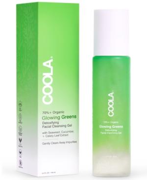 Glowing Greens Detoxifying Organic Facial Cleansing Gel