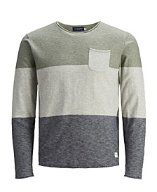 Men's Action Knit Stripe Crewneck Sweater