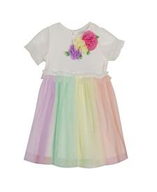 Toddler Girls Rib Knit to Color Mesh Dress