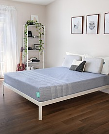 """10"""" Studio Mattress in a Box Collection"""