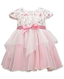 Baby Girls Floral Bodice Empire-Waist Mesh Dress
