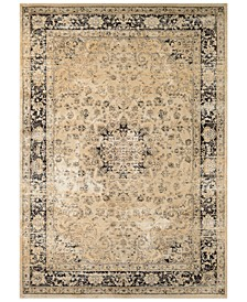 CLOSEOUT! HARAZ HAR428 Beige/Black Area Rugs