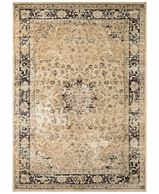"CLOSEOUT! Couristan HARAZ HAR428 Beige/Black 9'2"" x 12'5"" Area Rug"