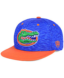 Top of the World Florida Gators Energy 2-Tone Snapback Cap