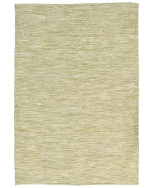 Liora Manne Java Indoor/Outdoor Lamar Green Flatweave 2' x 3' Area Rug