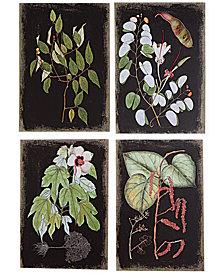 Botanical 4-Pc. Canvas Wall Print Set