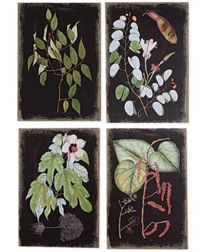 Image of Botanical 4-Pc. Canvas Wall Print Set