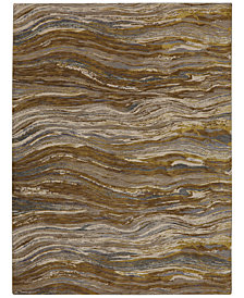 Karastan Enigma Continuum Desert Area Rug Collection
