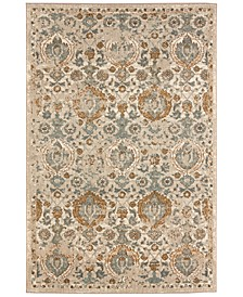 Touchstone Boyne Camel Area Rug Collection