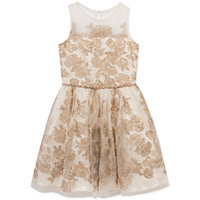 Rare Editions Toddler & Little Girls Party Dress (Off White/Gold)