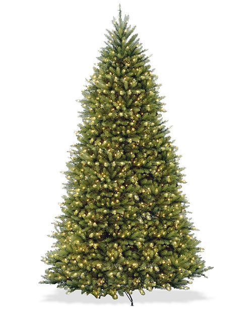 National Tree Company 10' Dunhill® Fir Full-Bodied & Hinged Tree With 1200 Clear Lights