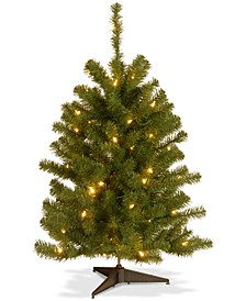 3' Eastern Spruce Tree With 50 Clear Lights