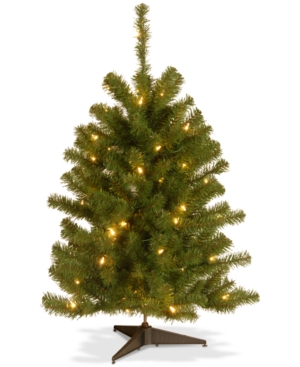 National Tree Company 3 Eastern Spruce Tree With 50 Clear Lights