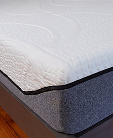 Sleep Trends Sofia Plush Gel Memory Foam 12-Inch Mattress, Quick Ship, Mattress in a Box - California King