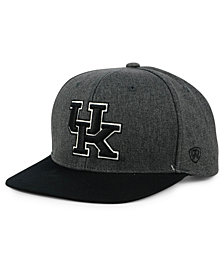 Top of the World Kentucky Wildcats Dim Snapback Cap