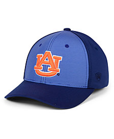 Top of the World Auburn Tigers Mist Cap