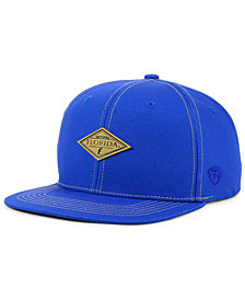 Top of the World Florida Gators Diamonds Snapback Cap